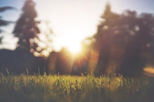 Sonnenzeit Programm