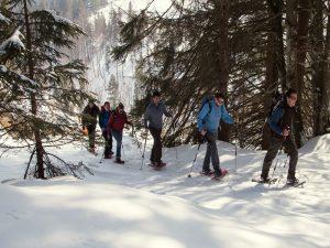 naturnah-schneeschuhwandern