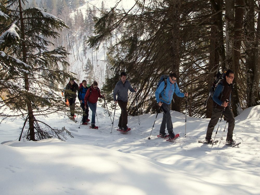 Naturnah – Schneeschuhwandern