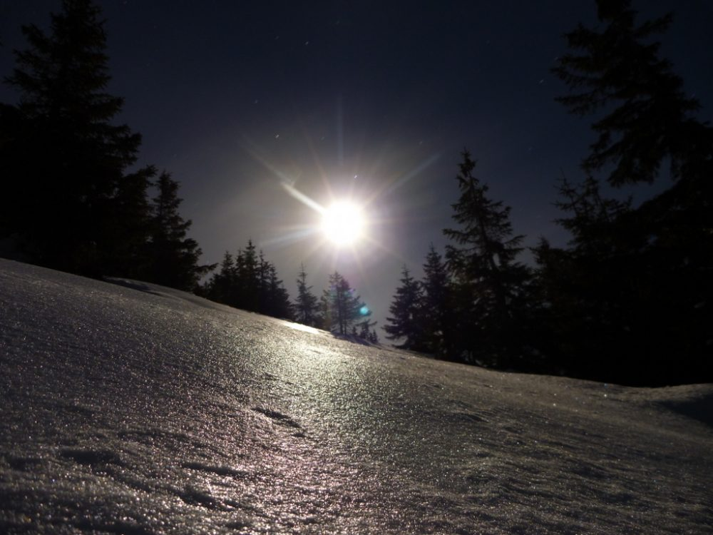 Schneeschuh-Nachtrunde