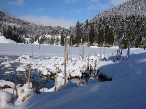 Winterwandern mit Spikes